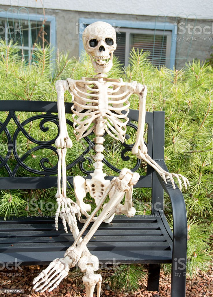 Skeleton Out In The Yard Sitting On Garden Bench Stock Photo & More ...