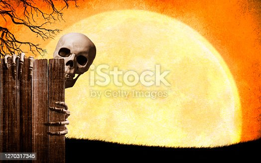 A skeleton peeks out from behind an old weathered fence in front of a large full moon. The fence provides ample room for copy and text.