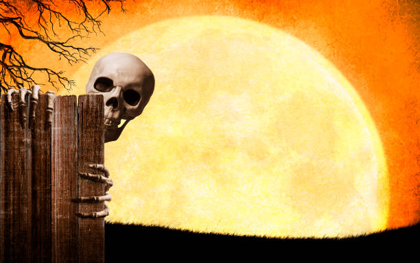Skeleton Peeking Out From Behind Old Weathered Fence stock photo