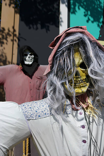 skeleton scarecrows - mikefahl stock pictures, royalty-free photos & images