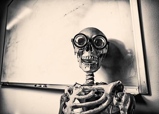 skeleton with whiteboard stock photo
