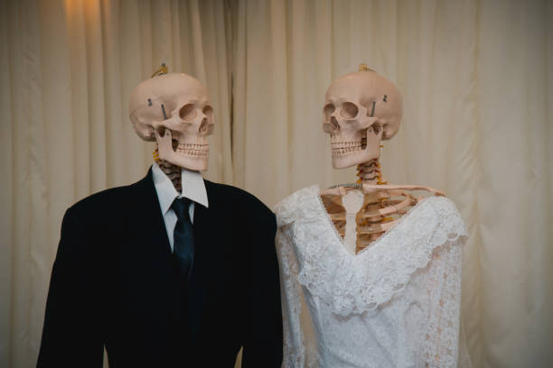 Skeletons in the bride groom wedding dress just married stock photo