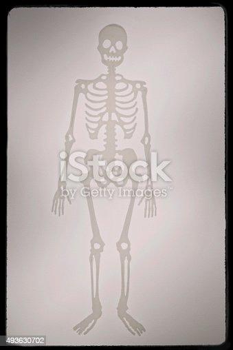 istock skeletons of humans in black frame 493630702