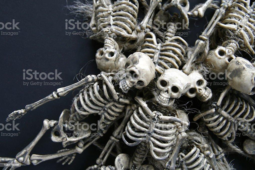 Skeletons royalty-free stock photo