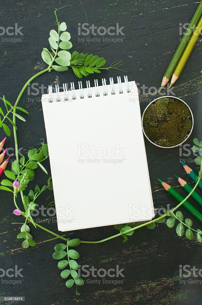 Fotografía de Dibujo Libro Moss Y Lápices De Colores En Tonos Verde ...