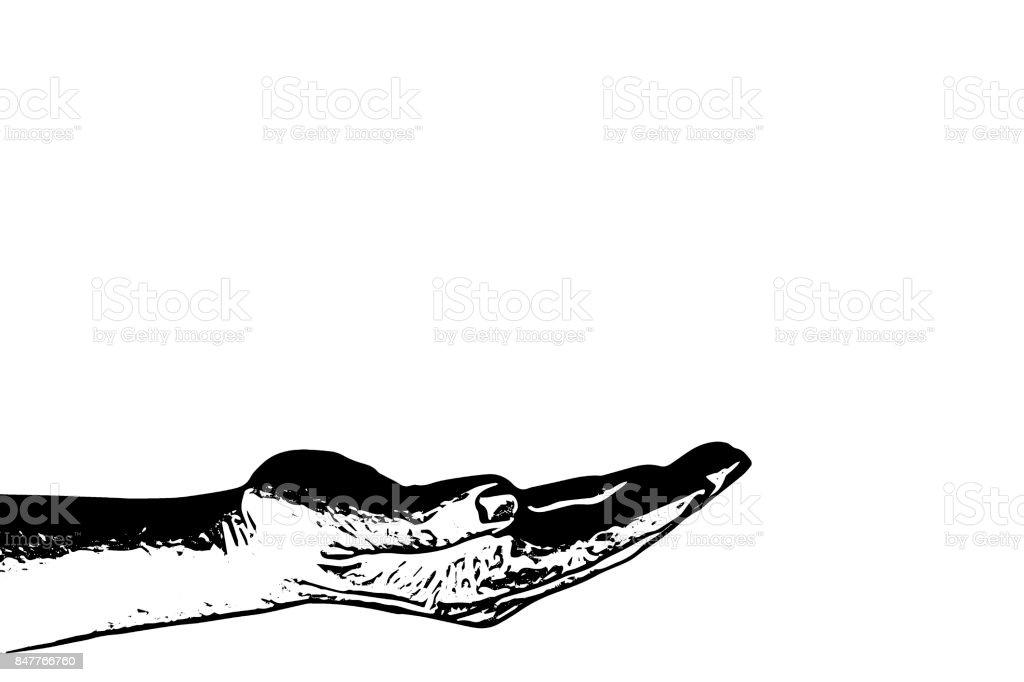 Zeichnung der offenen Hand für Beteiligung an zu skizzieren, zu helfen und geben Konzept – Foto