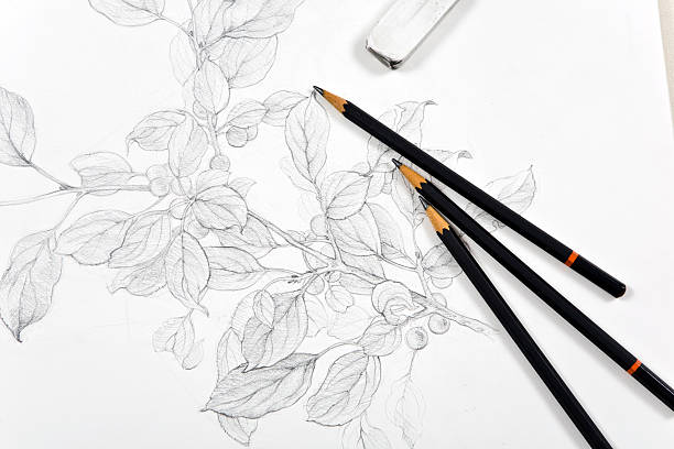 sketchbook - pencil drawing stock pictures, royalty-free photos & images