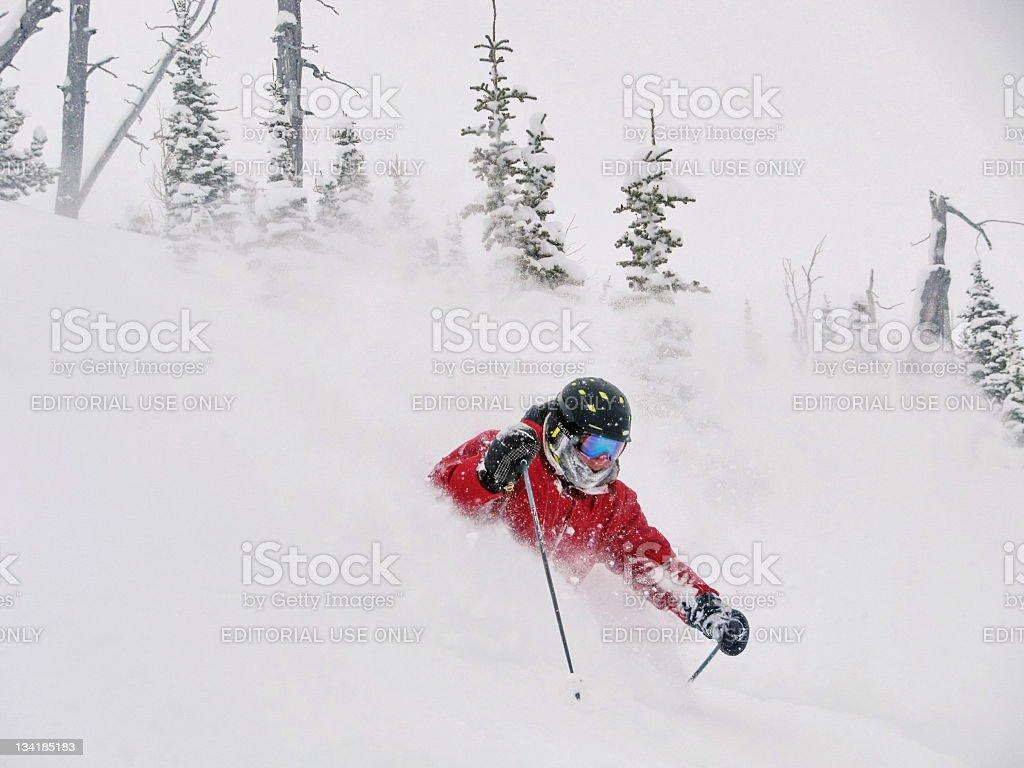 Ski Alberta Powder royalty-free stock photo