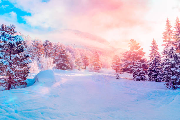 ski centre, stryn (norway) sunrise - february stock photos and pictures