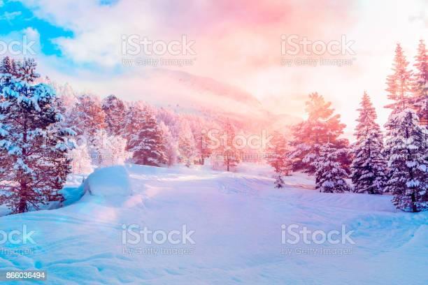 Ski Centre Stryn Sunrise-foton och fler bilder på Berg
