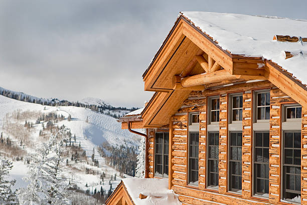 Chalet de Ski - Photo