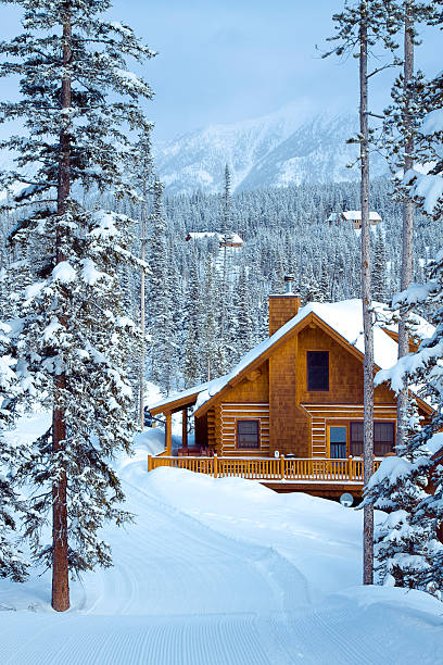 Ski In/ Out Ski in, Ski Out styled housing in the Rocky Mountains. chalet stock pictures, royalty-free photos & images