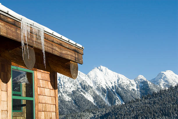 station de ski icicles - mont baker photos et images de collection