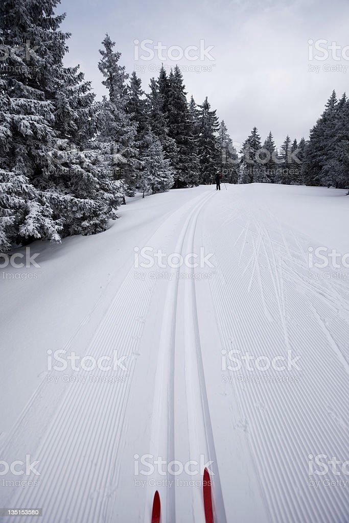 Ski runner on a beautiful winter day....Rogla,Slovenia stock photo