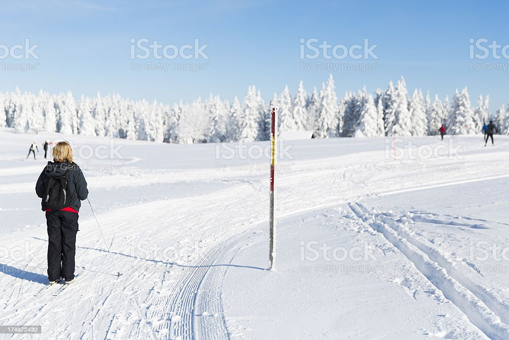 Ski runner on a beautiful winter day....Rogla,Slovenia royalty-free stock photo