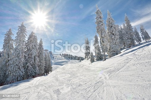 Ski slope and snow covered trees