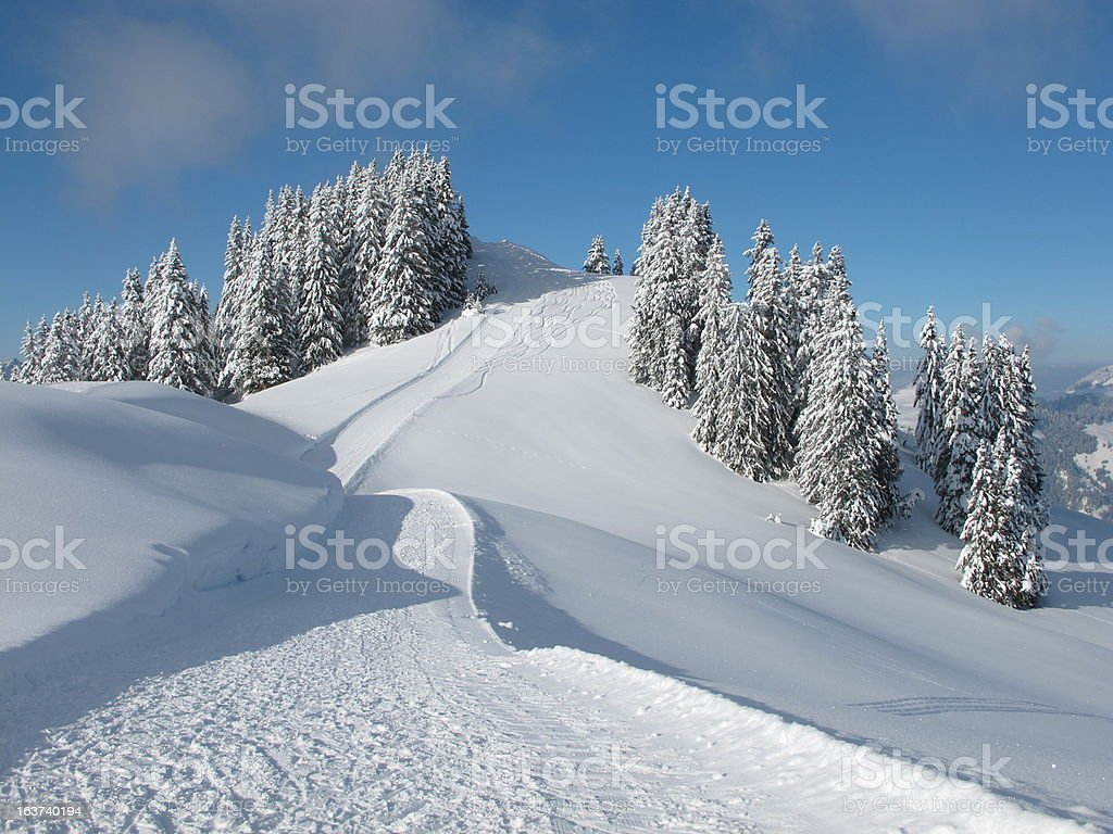 Ski slope and snow covered trees, Wispile stock photo