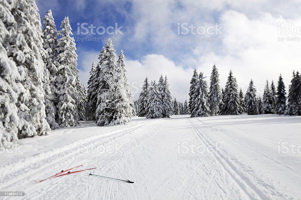 Ski slope on a beautiful winter day..Rogla,Slovenia,Europe royalty-free stock photo