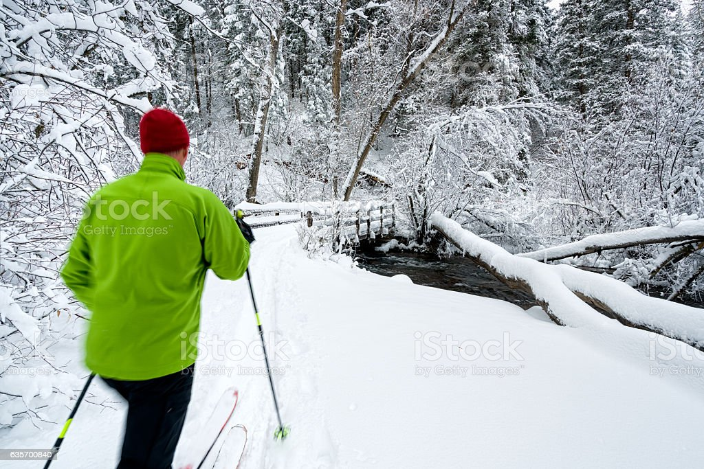 Ski Touring After Snow Storm Scenic Landscape royalty-free stock photo