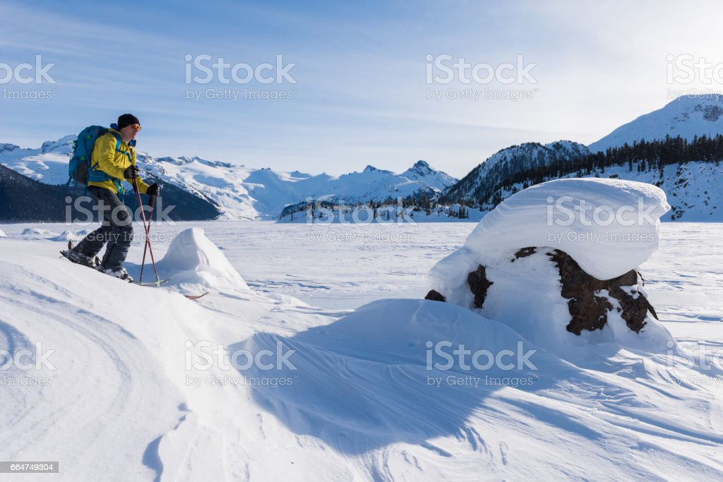 Ski touring in a winter wonderland stock photo