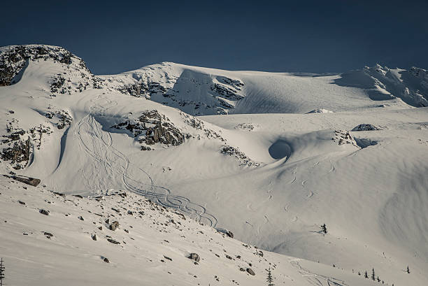 ski touring @ rogers pass - british columbia glacier national park stock pictures, royalty-free photos & images