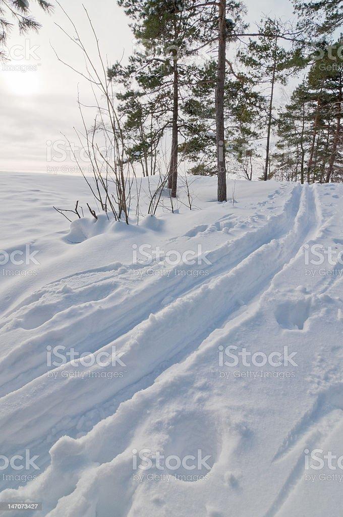 Ski track in Helsinki stock photo