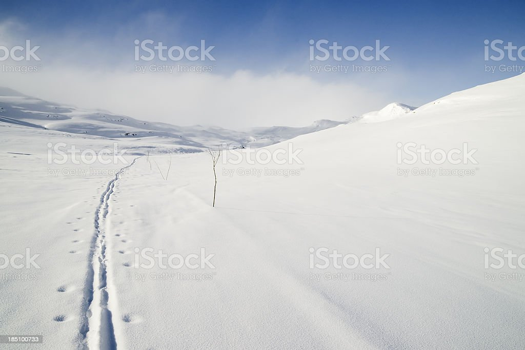 Ski track in Norway royalty-free stock photo