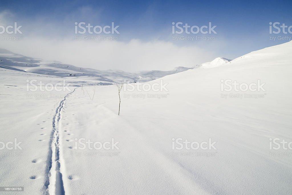 Ski track in Norwegen – Foto