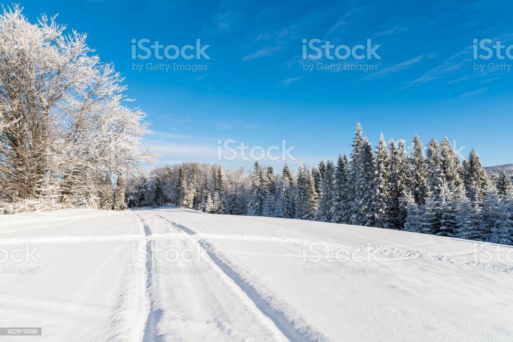 Ski track in winter landscape of Beskid Sadecki Mountains, Poland stock photo