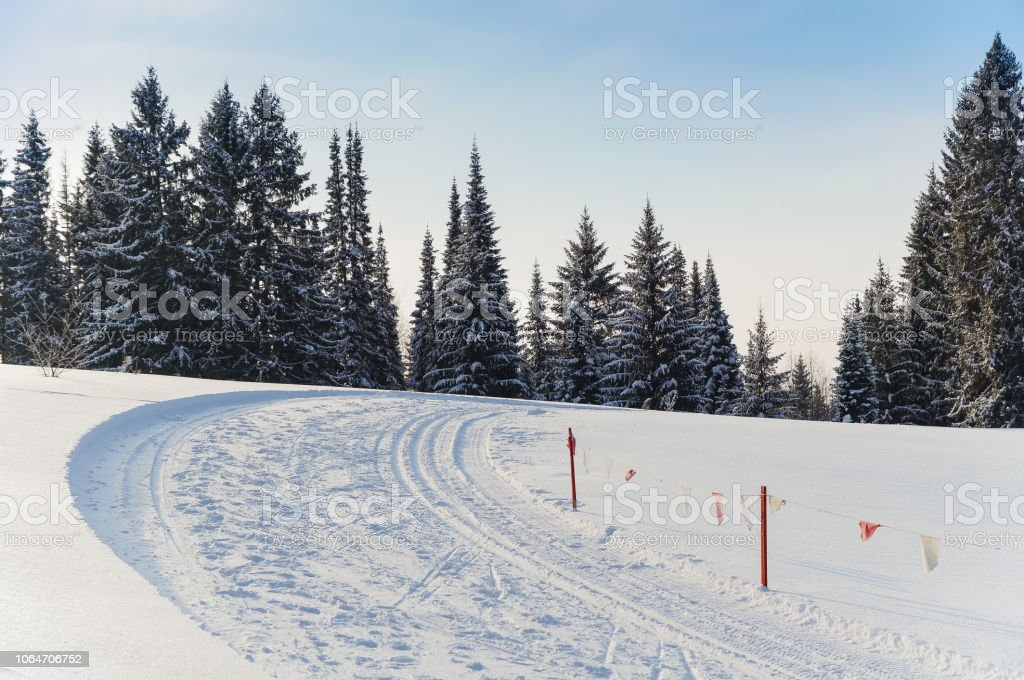Ski Track Turn With Flags In The Winter Forest Stock Photo