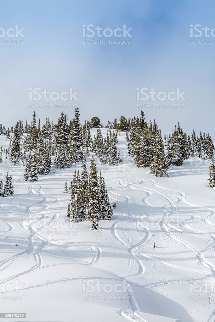 Ski Tracks in Fresh Powder Snow stock photo