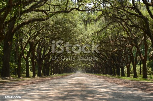 The picturesque road lined with more than four hundred live oak trees that hang over Oak avenue lead right to the heart of Wormsloe State Historic Site and plantation.