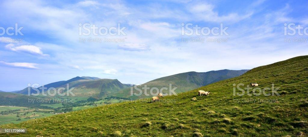 Skiddaw and Blencathra from Threlkeld Knotts stock photo