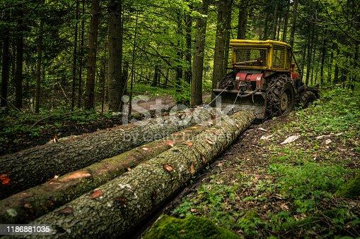 istock Skidder pulling logs 1186881035