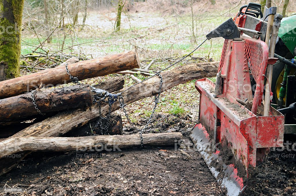 Skidding timber stock photo