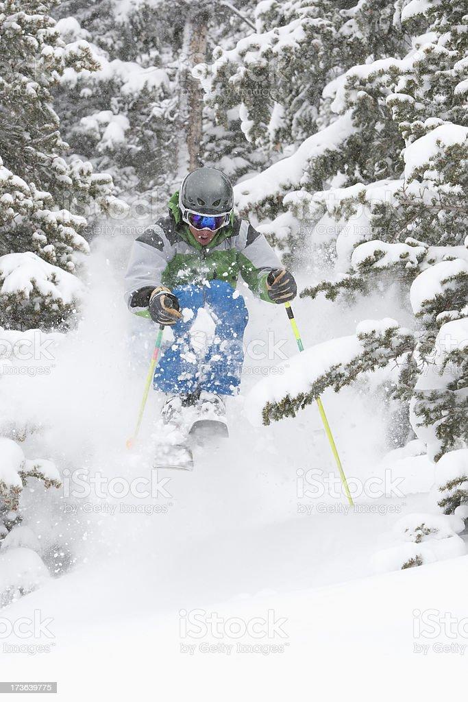 Skier blasting trough powder snow royalty-free stock photo