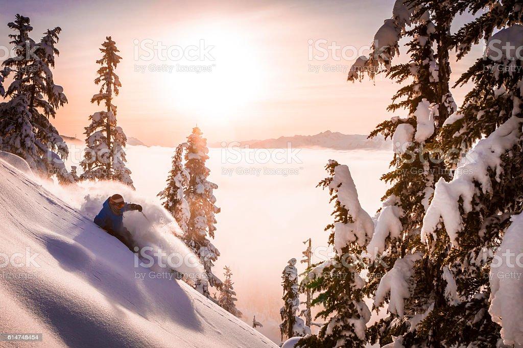 Skier carving fresh powder in sunset. stock photo