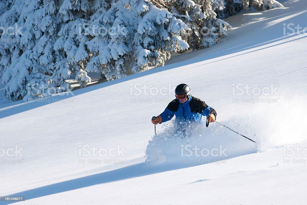 Esquiador cortado fresca de nieve en polvo foto de stock libre de derechos