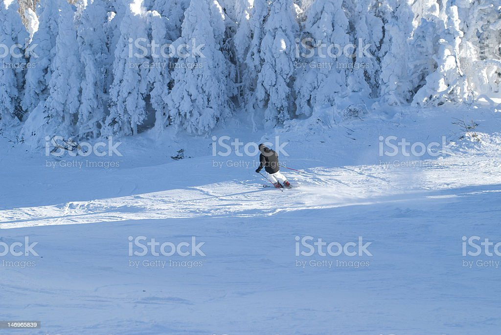 Skier enjoying a beautiful day on the slopes royalty-free stock photo