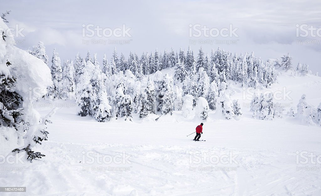 Skier In A White World royalty-free stock photo