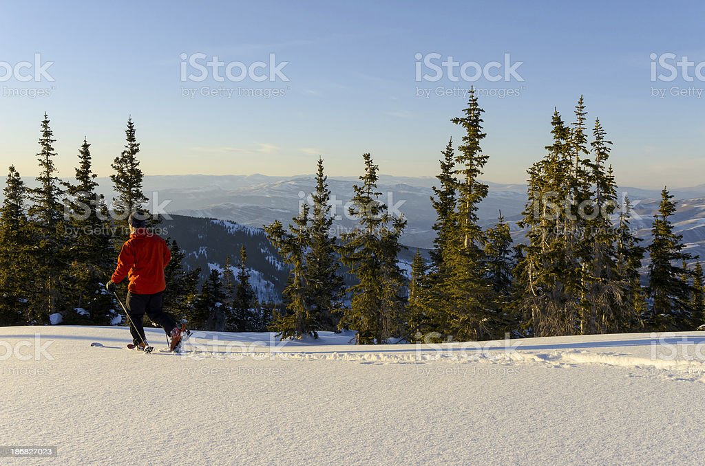 Skier in Pristine Mountains with Fresh Snow stock photo