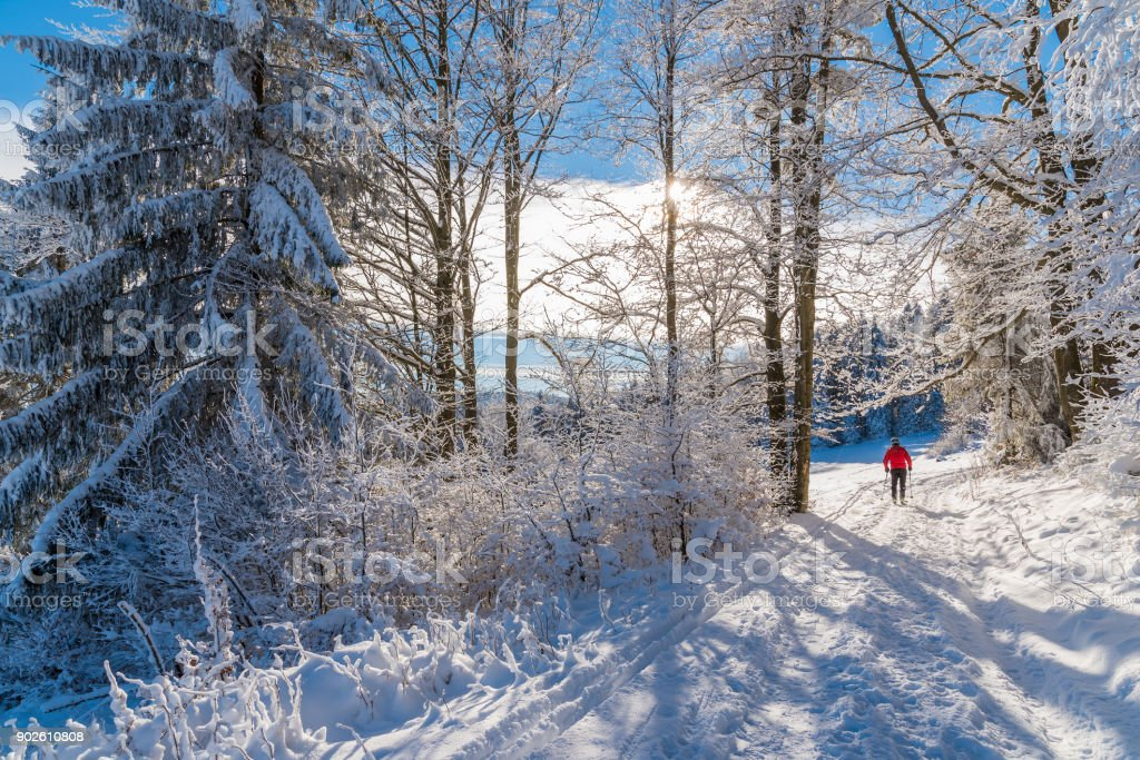 Skier on track in winter landscape of Beskid Sadecki Mountains, Poland stock photo