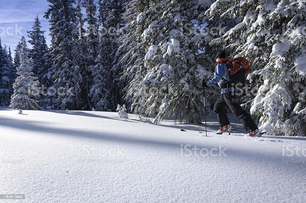 Skier Ski Touring in the Mountains with Fresh Snow stock photo