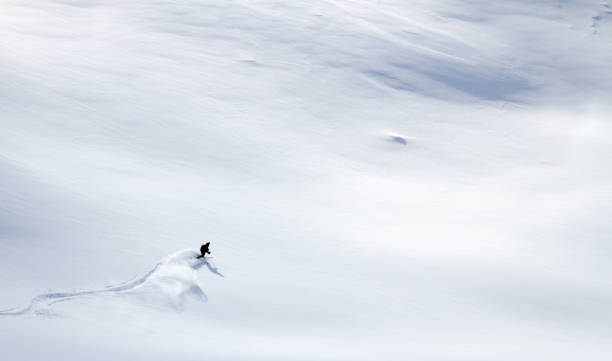 Skier skiing offpiste in powder snow picture id852028630?b=1&k=6&m=852028630&s=612x612&w=0&h=ruy2nign6smm65z8frckplc 9ibvazvsj9 krom3ucm=