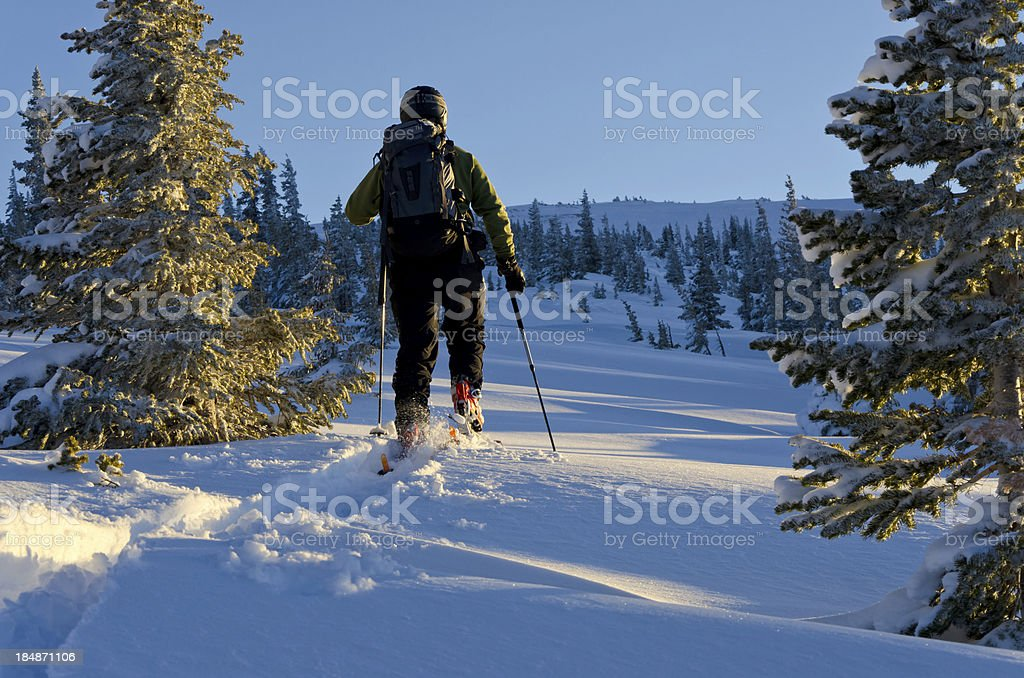 Skier Skinning at Sunset with Warm and Cool Light stock photo