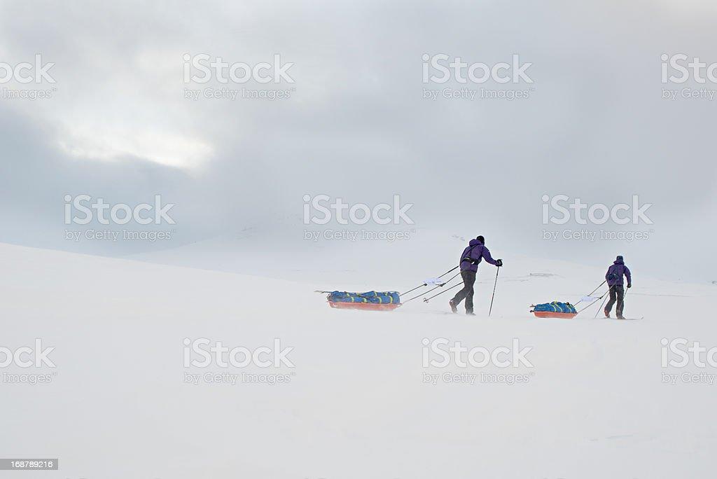 Skiers royalty-free stock photo