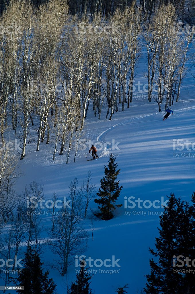 Skiing Aspen Trees with Sunset Shadows stock photo