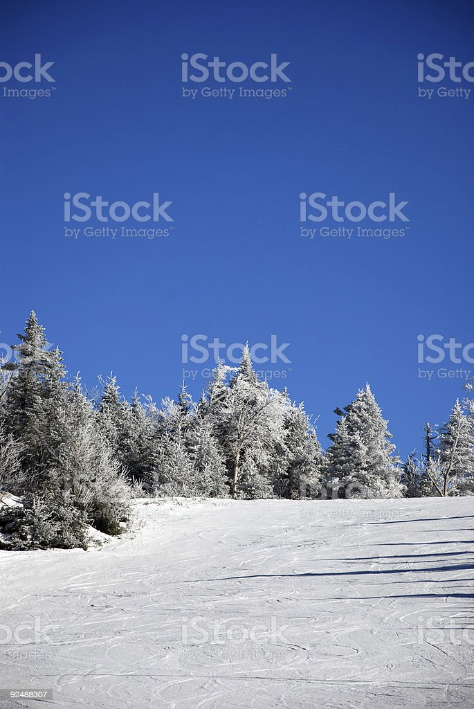 Skiing hill royalty-free stock photo