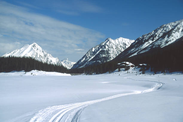 Skiing in the Rockies A cross country ski trail in Kananaskis Country, Alberta, Canada. kananaskis country stock pictures, royalty-free photos & images