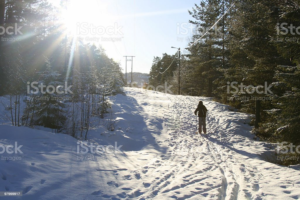 Skiing path in the forrest royalty-free stock photo